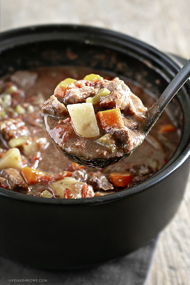 Ladle of Oven Beef Stew