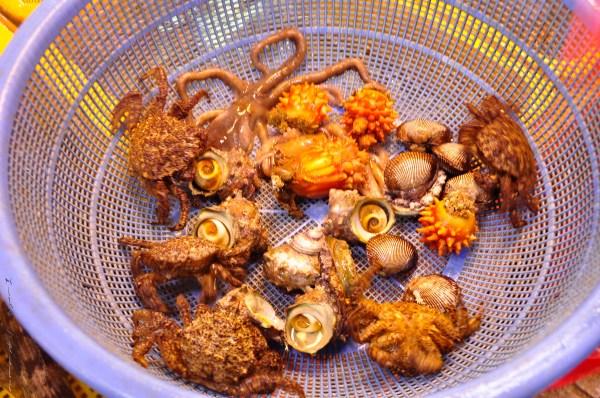 Busan Fish Market-12