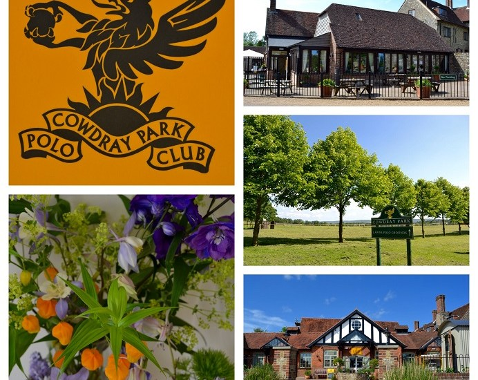 award winning, beefburger, viognier, The Exceptional English wine Company, Hip Hop, real ale, empanadas, Cowdray Farm & cafe, Cowdray Estate, Cowdray Park, polo, Midhurst, West sussex, Lodsworth, Piece of Heaven, bakery, Upperton, salsa, micro-brewery, organic juices,Monmouth coffee, flat white, Neal's Yard Dairy, cheese, roquefort, cheddar, chutney, Cowdray Estate, Gold Cup, Noble & Stace