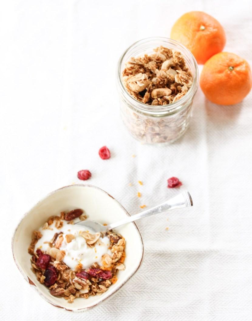 homemade granola cranberry orange