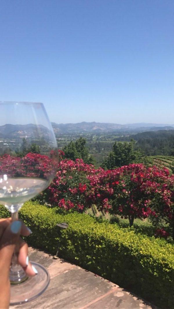 Newton Vineyard Napa Valley