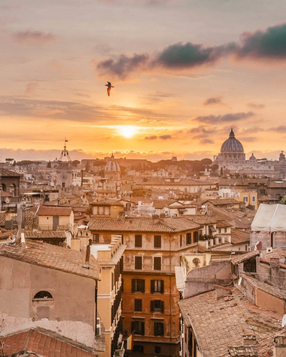 Terrazza Wanderlust A Full Review Of The Best Tours In Rome With City Wonders Live
