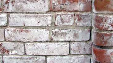 Photo of efflorescence on brick