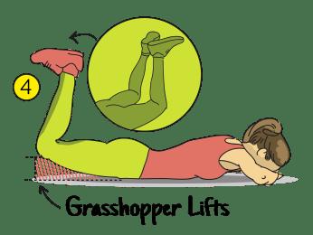 grasshopper lifts
