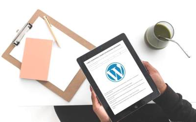 4 Best WordPress Themes for Blogging Beginners
