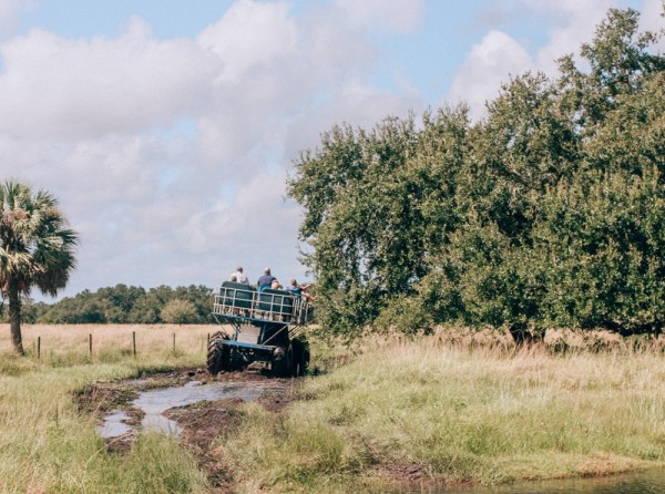 Swamp buggy at Westgate River Ranch