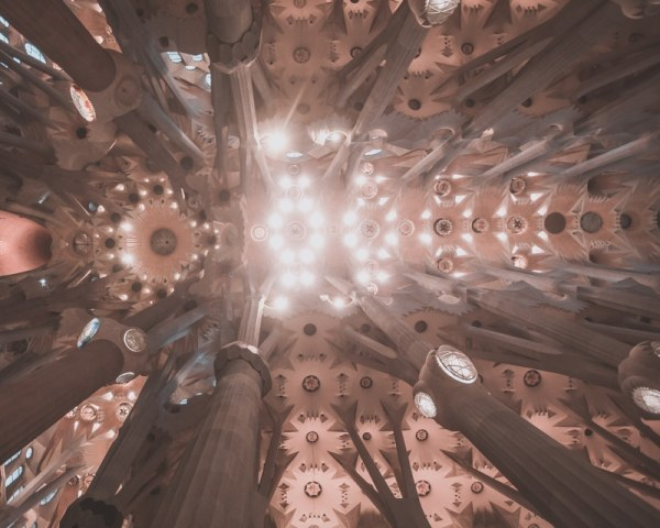 The ceiling inside Sagrada Familia is an impressive sight to see. Click here for all the best things to do in Barcelona in 3 days.