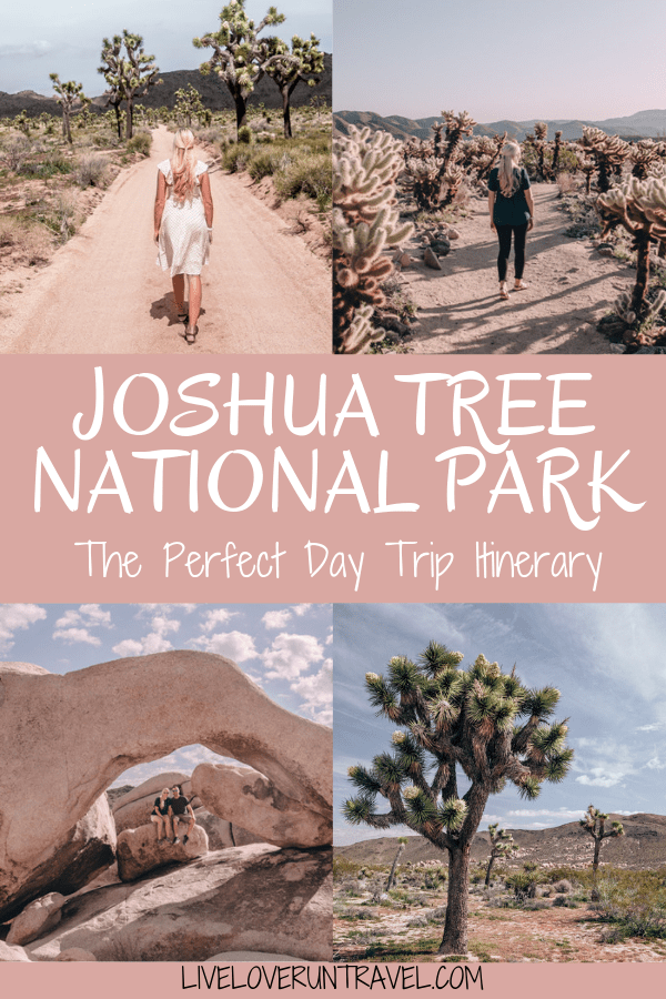 Joshua Tree is the perfect stop on a road trip or for a one day stop, so here is a one day itinerary of all the spots you don't want to miss!