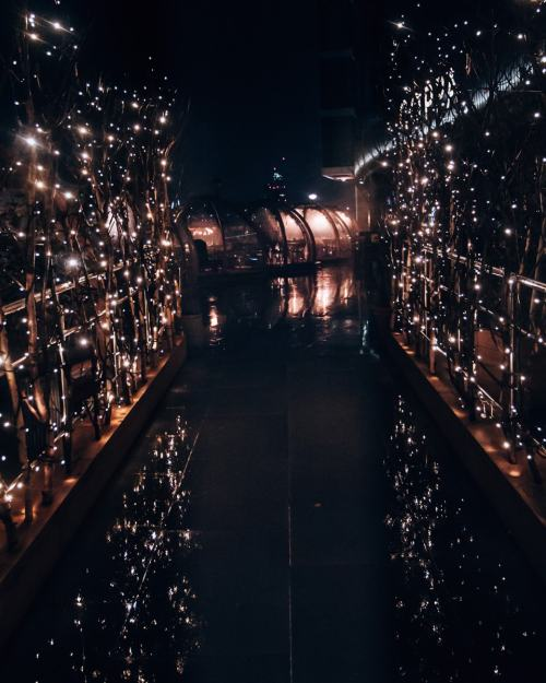 The walkway into the Coppa Club igloos at night - find all the best places to go at Christmas for a winter vacation in London (plus a free map!)