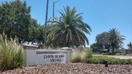 Davis Islands Village 2