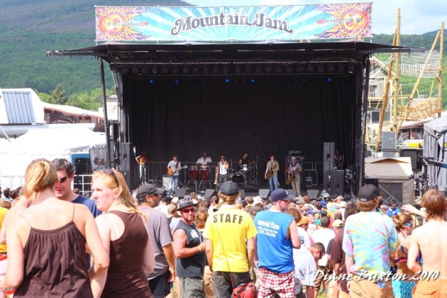 Mountain Jam 2010 Crowd