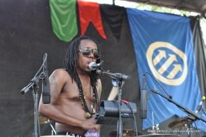 Shabazz Palaces @ Pitchfork Music Festival 2011