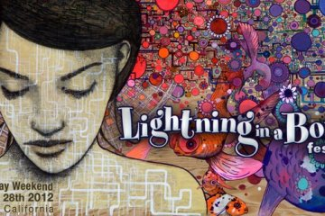 lightning in a bottle 2012 art
