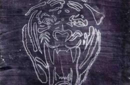 Tigerface, Marco Benevento
