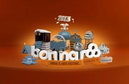 bonnaroo2013