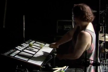 "Fishman plays the Marimba Lumina during ""Mule"" 7/14/13."