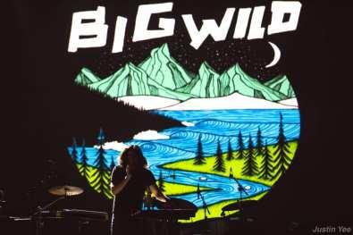 Big Wild
