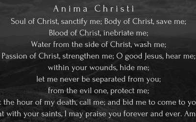 Anima Christi in song