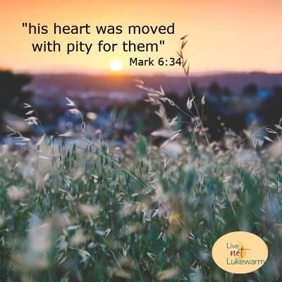 Sunday Scripture, July 18