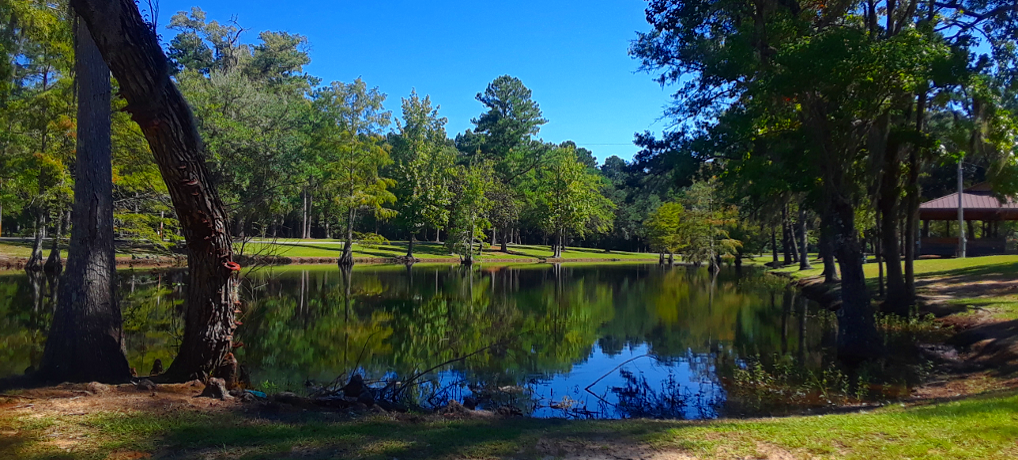 Experiences & Recreation at Live Oak Landing