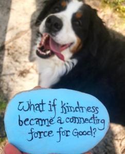 Kindness+Rock+Project+6