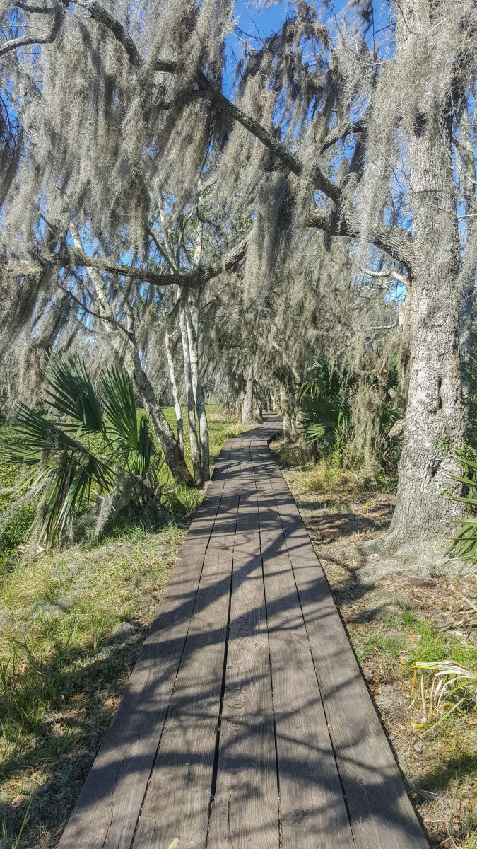 Boardwalk on the Bayou Coquille-Marsh Overlook Trail