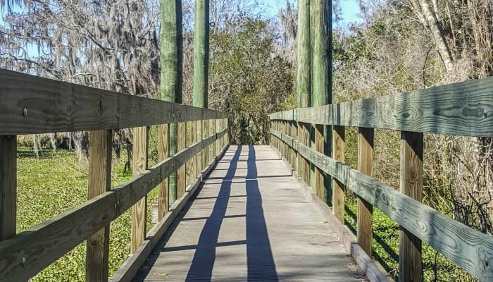 Bridge over the waterway