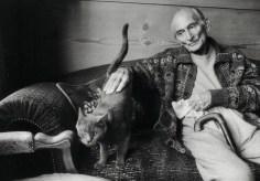 Balthus il Re dei Gatti