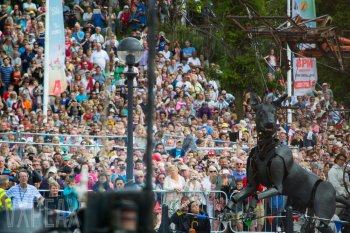 Xolo with the crowds