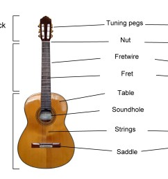 guitar anatomy 101 [ 2400 x 1600 Pixel ]