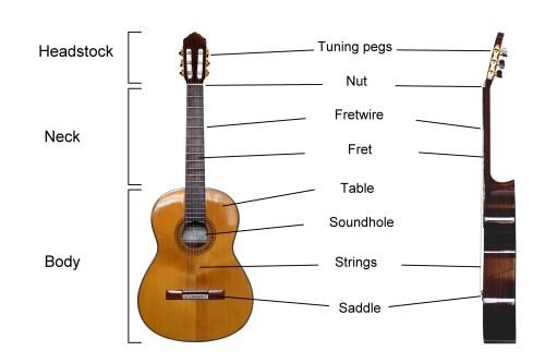 small resolution of guitar anatomy 101