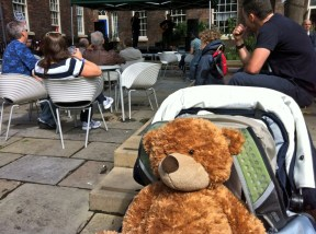 There's a bear in the Bluecoat garden!
