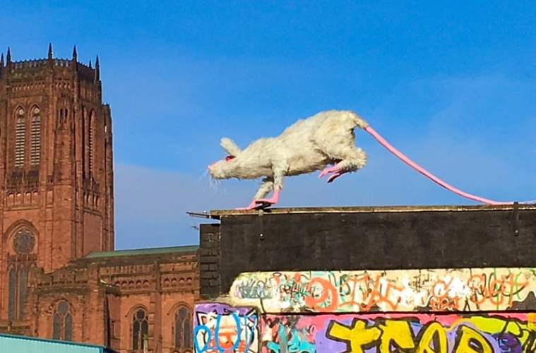 'Super Rat' Hits The Streets of Liverpool's Baltic Triangle 2