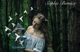 Sophie Bernice 'Learn to Love Again' Single Review