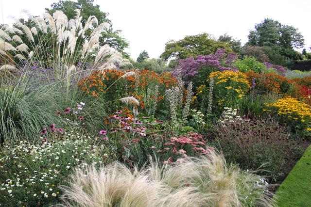 Ness Gardens