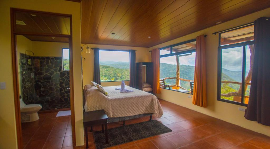 how to arrange a rainforest hotel in monteverde costa rica