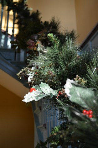 In the 1700s, evergreens and local plant material, like boxwood, magnolia and holly would be brought into the house, but in small quantities.