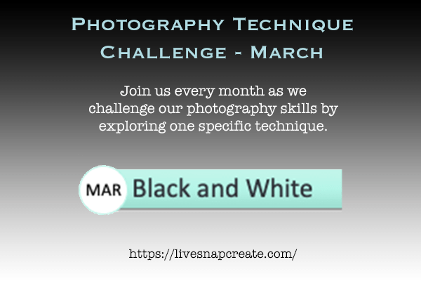 March Photography Technique Challenge
