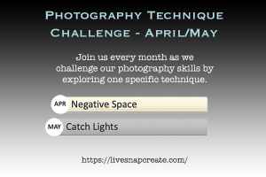 Photography Technique Challenge Negative Space and Catchlights