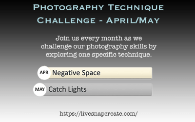 Photography Technique Challenge – April/May – Negative Space and Catchlights
