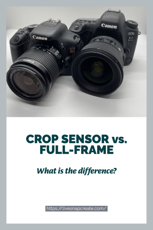 Two canon DSLR cameras - one crop sensor the other full-frame sensor