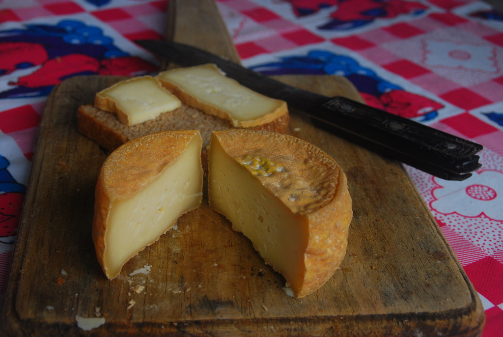 Nicaraguan Style Goat Cheese