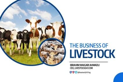 livestock-business