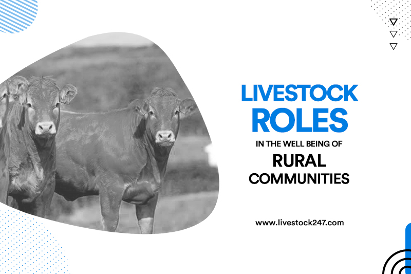 Livestock Roles in the Well being of Rural Communities