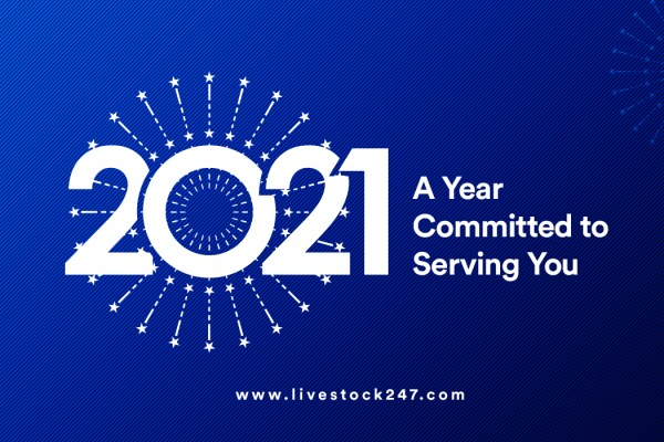 A Year Committed to Serving You