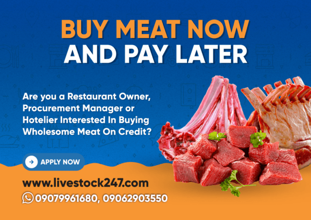 Buy Meat and Pay Later