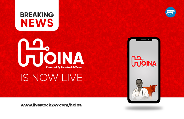 BREAKING NEWS: HOINA is now LIVE!!!