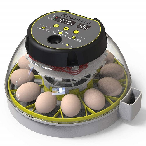 KEBONNIXS 12 Egg Incubator