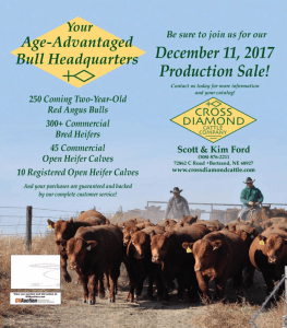 Cross Diamond Cattle Company Production Sale @ Cross Diamond Cattle Company | Bertrand | Nebraska | United States