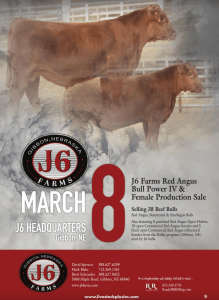 J6 Farms Red Angus Bull & Female Production Sale @ J6 Farms | Gibbon | Nebraska | United States
